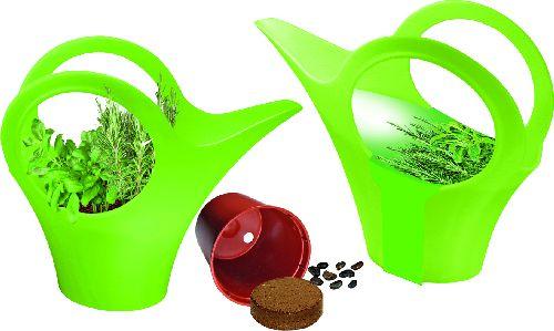 Camilla XS Grüne Oase, Kräutermischung Farbe: grün